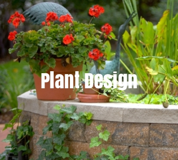 plant-design-landscaping-services-in-grand-rapids-michigan